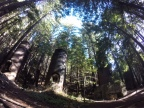 Limekiln Camping, Big Sur