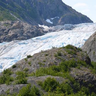 Exit Glacier @ Seward